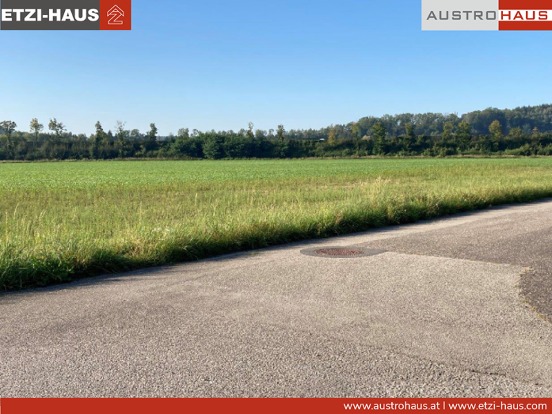 2021_04_web_Pucking_Holunderstraße_Grundstückfoto_Realmanager_2.png
